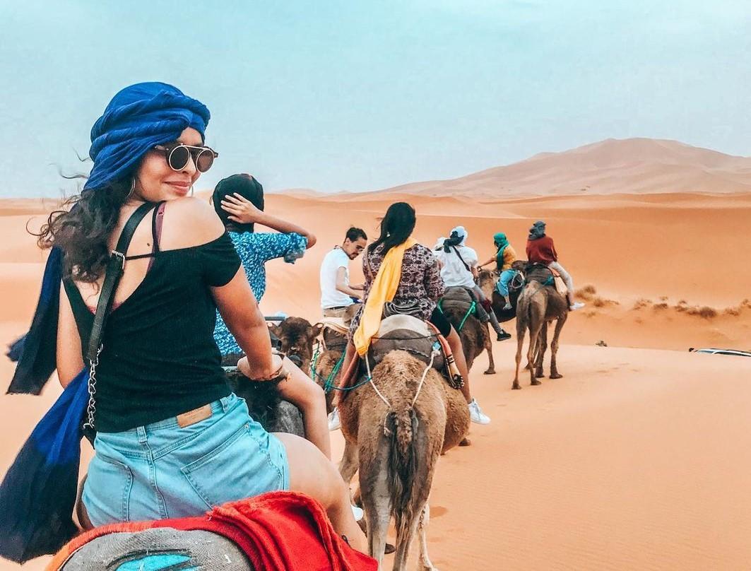 Camelos(2)