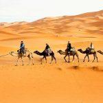 Casablanca to Marrakech desert trip 7 days