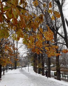 Ifrane city in the snow time